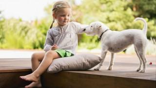 Ein kleines Mädchen streichelt einen Hund