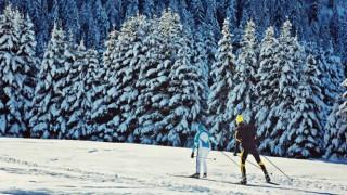 Langlauf in einer Winterlandschaft