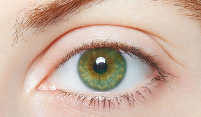 Nahaufnahme des Auges einer Frau