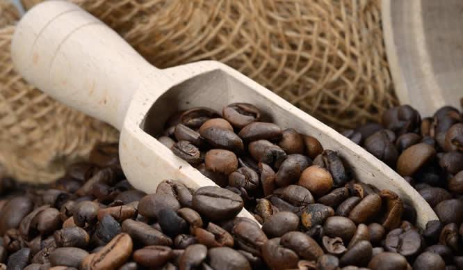 Frisch geröstete Kaffeebohnen