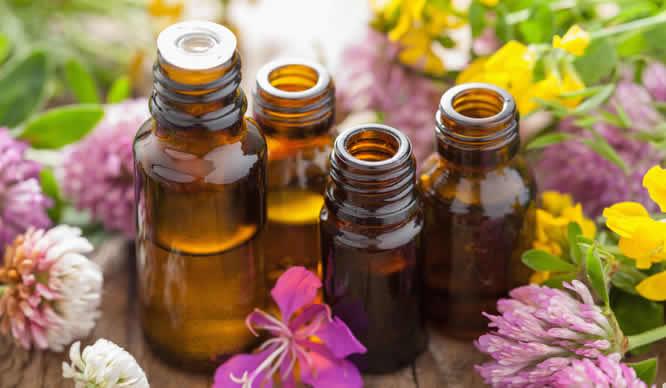 Bei der Aromatherapie kommen ätherische Öle zum Einsatz
