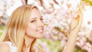 Eine hübsche junge Frau schnuppert an Kirschblüten
