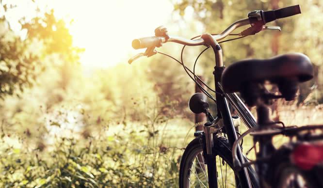 Ein im Grünen abgestelltes Mountainbike
