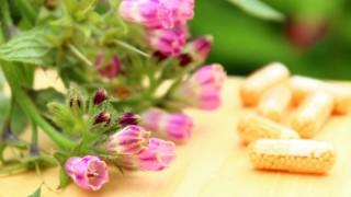 Die Blüten der Beinwell-Pflanze und einige Extrakt-Kapseln