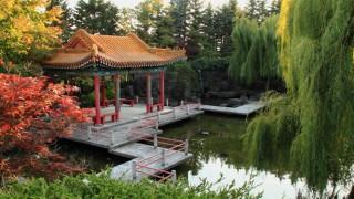 Ein Pavillion in einem chinesischen Garten