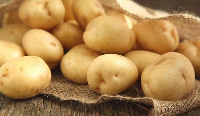 Frische Kartoffeln in einem Leinensack