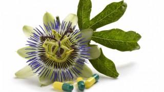 Passionsblume und Kapseln mit Extrakt