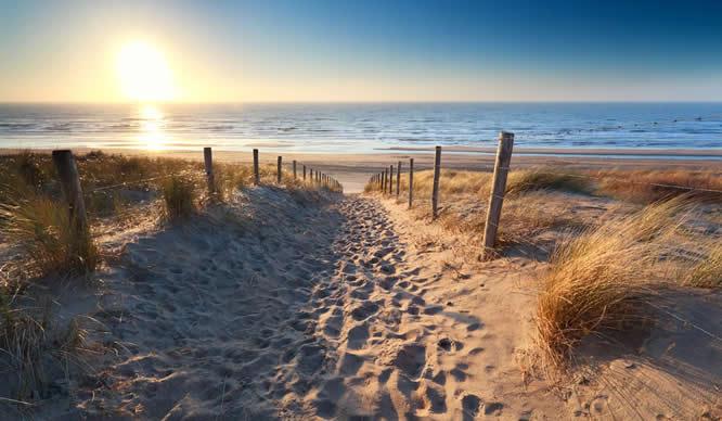Ein sonniger Strandpfad an der Nordsee