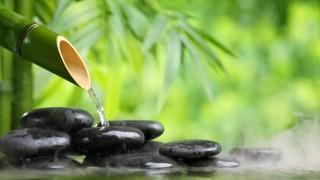 Wellness entspannt Körper und Seele.